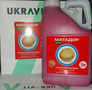 Протруйник від дротяника - Матадор